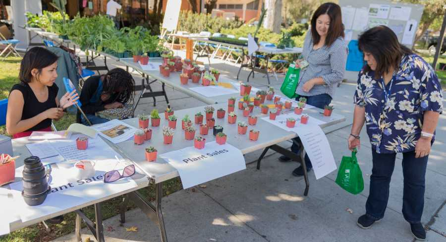 Horticultural Club hosts drought workshop in midst of three-year CA dry spell